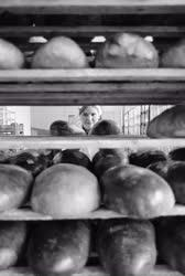 Ipar - Élelmiszeripar - Kenyérsütés