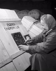 Mezőgazdaság - Herbária Vállalat békéscsabai telepe