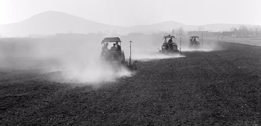 Mezőgazdaság - A Bolyi Állami Gazdaságban