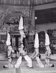 Kultúra - Cirkusz - A kínai cirkusz műsora