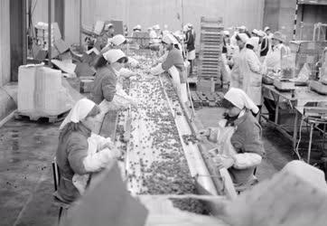 Ipar - Élelmiszeripar - A miskolci hűtőház