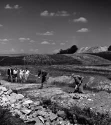 Régészet - Tokod melletti ásatások