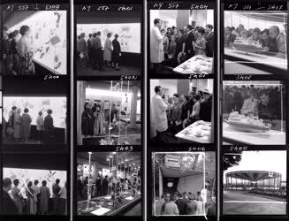 Kiállítás - Ipar - Külkapcsolat - Moszkvai kiállítás