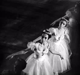 Balett - A Moszkvai Nagyszínház balettegyüttese