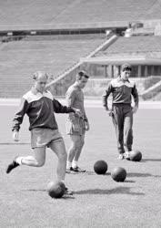 Sport - Labdarúgás - A Real Madrid focistái edzenek