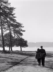 Őszi kirándulás - Szerelem