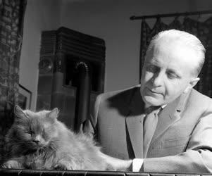 Illés Endre Kossuth-díjas író, színműíró