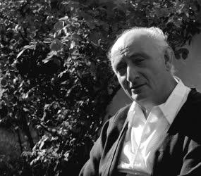 Vas István Kossuth-díjas költő