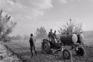 Mezőgazdaság - Növénytermesztés - Permetezés Miskolcon