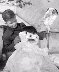 Városkép-életkép - Időjárás - Kisfiú hóembert épít