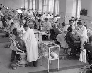 Egészségügy - Orvostanhallgatók a Fogászati Klinikán