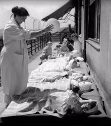 Egészségügy - Heine-Medin Utókezelő Kórház