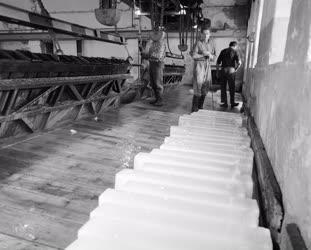 Ipar - Jégipar - Táblás jég a jéggyártósoron a Jász utcai üzemben