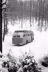 Közlekedés - Autóbusz a Mátraháza felé vezető úton