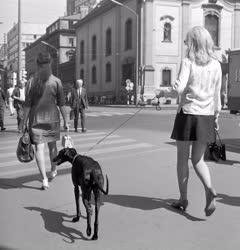 Életképek - Budapesti életkép