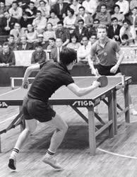 Sport - Japán-magyar asztalitenisz-verseny