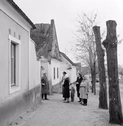 Belpolitika - Az 1960. évi népszámlálás