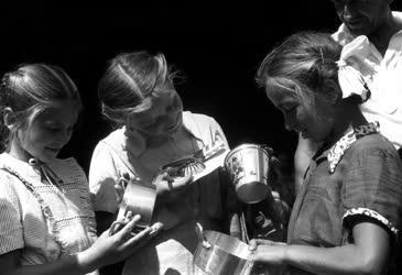 Oktatás - Szegedi gyerekek a Fémlemezgyárban