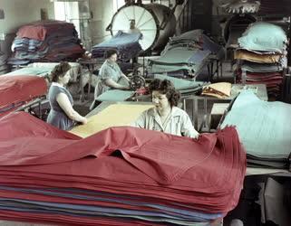 Könnyűipar - Pálma Gumigyár