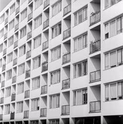 Városkép - Szeged - Sellőház