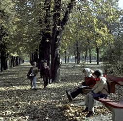 Életkép - Gyerekek egy parkban
