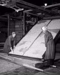 Ipar - Műanyagipar - Kaisen a Kecskeméti Konzervgyárban