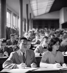 Oktatás - Külkapcsolat - Külföldi hallgatók a felsőoktatá