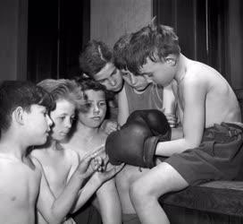 Sport - Ismerkedés a bokszkesztyűvel
