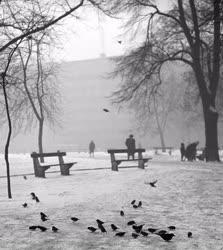 Időjárás - Tél Budapesten