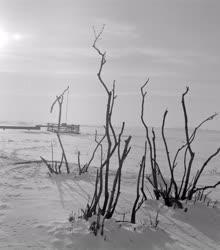 Életkép - Természet - Gémeskút a havas Hortobágyon