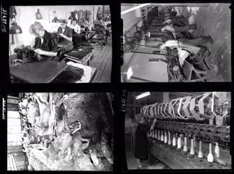 Ipar - Szőrmegyár, Szövőgyár