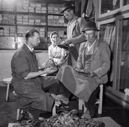 Kereskedelem - A dunavecsei fmsz. ruházati boltja
