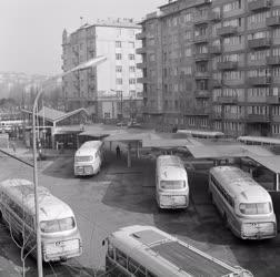Városkép - Buszpályaudvar