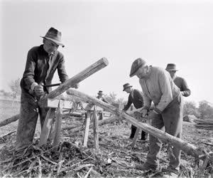 Építkezés - Ácsok munkában Nagyrédén