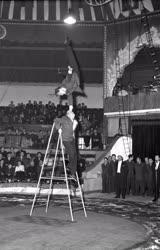 Szórakozás - Cirkusz - Egyensúlyozók a Fővárosi Nagycirkus