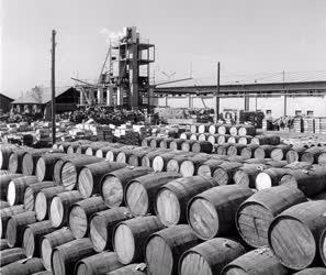 Ipar - Élelmiszeripar - Szegedi konzervgyár udvara