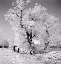 Időjárás - Téli képek