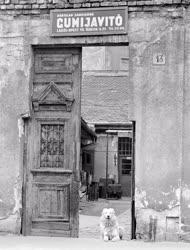 Városkép - A régi Józsefváros
