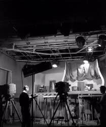Média - Mi újság a Futrinka utcában című TV-mese forgatása