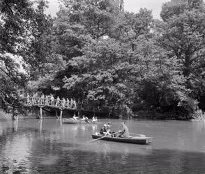Táj - Zenebarát klubtagok csónakáznak a tavon