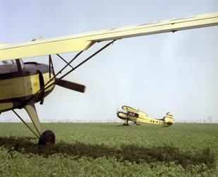 Mezőgazdaság - Repülőgépes növényvédelem Bánhalmán